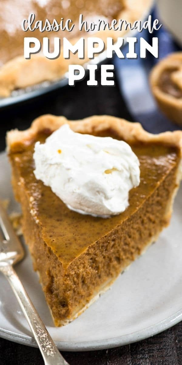 SLICE Of pumpkin pie on white plate