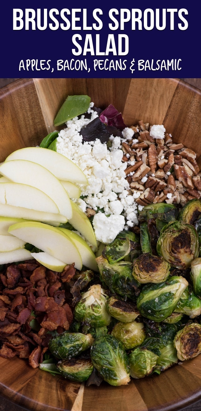 This easy Brussels sprout Salad is sure to be a huge hit! With apples, pecans, bacon and a balsamic vinaigrette, it's one of our favorite fall salad recipes.