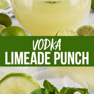 collage of vodka limeade punch recipes
