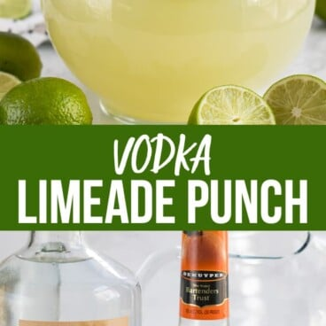 collage of vodka limeade punch photos