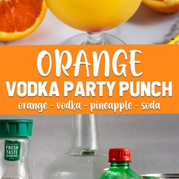 collage orange vodka party punch photos