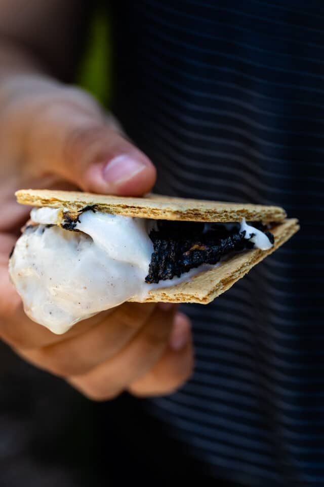 ice cream s'more in hand