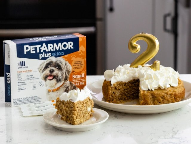 slice of cake on plate with pet armor box