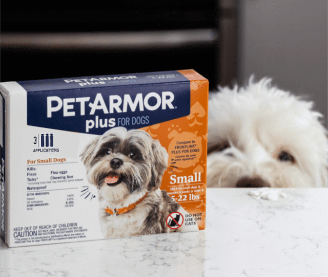 pet armor box and dog