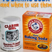 baking powder and baking soda