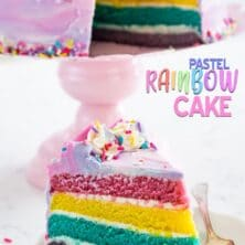 pastel rainbow cake slice on plate