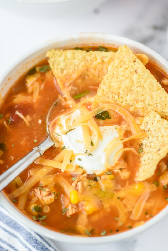 Easiest Mexican chicken soup