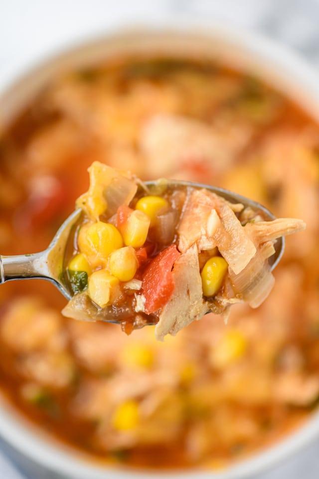 Mexican salsa soup