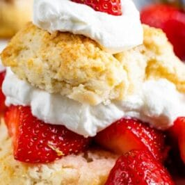 Biscuit strawberry shortcake on white plate with words on photo