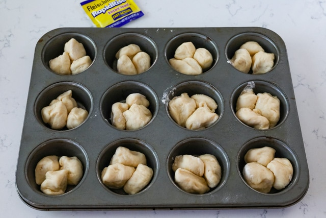 Raw dough in muffin pan before being baked into cloverleaf dinner rolls