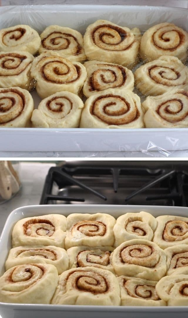 collage of cinnamon rolls before and after rising