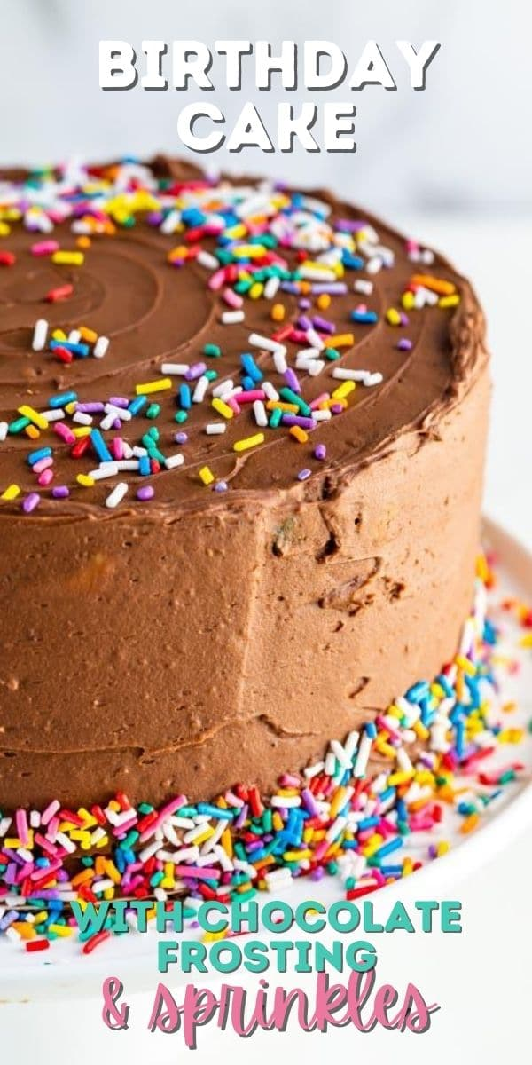 Chocolate frosting birthday cake with rainbow sprinkles and recipe title on image