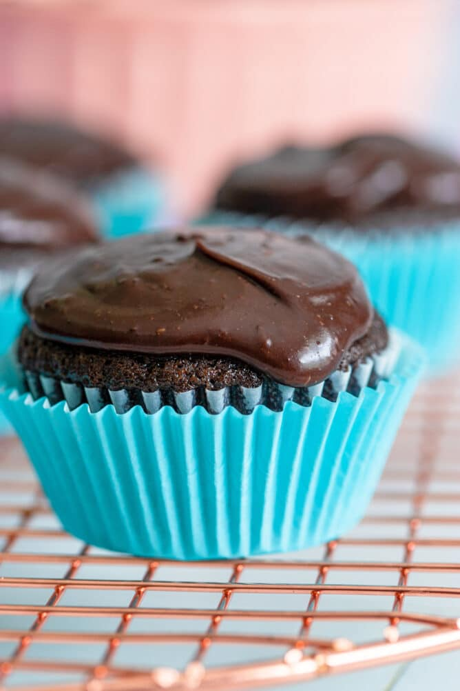 Moist Chocolate Cupcakes Best Recipe Crazy For Crust