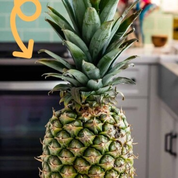 pineapple sitting on kitchen counter with words on photo