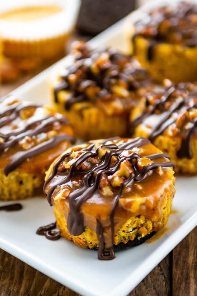 Close up shot of mini turtle pumpkin cheesecakes